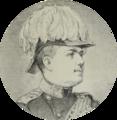 Fürst Milan Obrenović IV. 1872 A. Palm.png