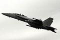 F-18 Super Hornet (5143896449).jpg