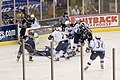 Falcons @ Ice Dogs (404316809).jpg