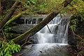 Fall Creek (Revisited) (2) (11659382605).jpg