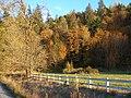 Fall Hillside - panoramio.jpg