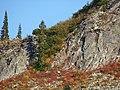 Fall colors (1797a51a9b37426eac18c56632ac4df6).JPG