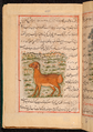 Faraḥ nāmah 057.png