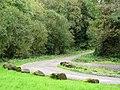 Farm road - geograph.org.uk - 1005974.jpg