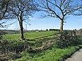 Farmland, Cwm-y-Breach, Moulton, near Barry. - geograph.org.uk - 373535.jpg