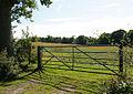 Farmland, Pylewell - geograph.org.uk - 1431817.jpg