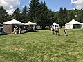 Festival Manitou 2017 19.jpg