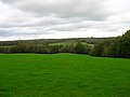 Field opposite Broomfield Farm - geograph.org.uk - 267522.jpg