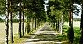 Finland - Porvoo - panoramio (3).jpg