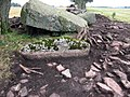 Firse sten (Raä-nr Falköpings Östra 1-1) utgrävning-08 1362.jpg