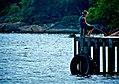 Fishing (3213010800).jpg