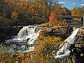 Flickr - Nicholas T - Resica Falls.jpg