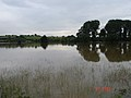 Flooded fields in Birlingham - geograph.org.uk - 1274584.jpg