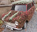 Flower covered Mini, Birmingham City Centre - geograph.org.uk - 1706471.jpg