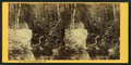 Flume, Dixville Notch, N.H, by Bierstadt Brothers.png