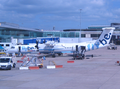 Flybe Manchester.png