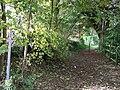 Footpath. - geograph.org.uk - 1551702.jpg