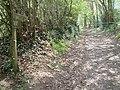 Footpath to Brookheath - geograph.org.uk - 160749.jpg