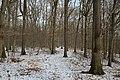 Forêt départementale de Beauplan sous la neige 2012 39.jpg
