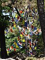 Forest Clearing with Prayer Flags - Outside Bhagsu - Near McLeod Ganj - Himachal Pradesh - India (26539887280).jpg