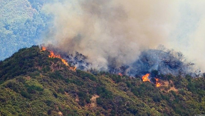 File:Forest fire above Serra de Agua (37385858634).jpg
