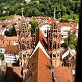 Freiburgs Münster.jpg