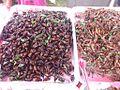 Fried bugs.JPG