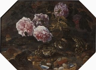 Frogs, Wild Roses, Shells and Butterflies