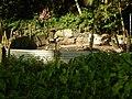 Futuna parc à cochons.jpg