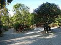 Gabaldon,NuevaEcijajf9426 05.JPG