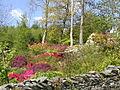 Garden near Knipe Fold - geograph.org.uk - 13027.jpg