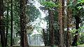 Garten der Villa Bomonti DSC05866.jpg