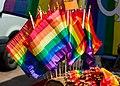 GayPride 2015, Toulouse cvg 0740.jpg