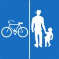 Geh- und Radweg ohne Benützungspflicht getrennt §53 28b.png