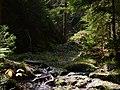 Gelobtbachtal, údolí Klopotského potoka - panoramio (39).jpg