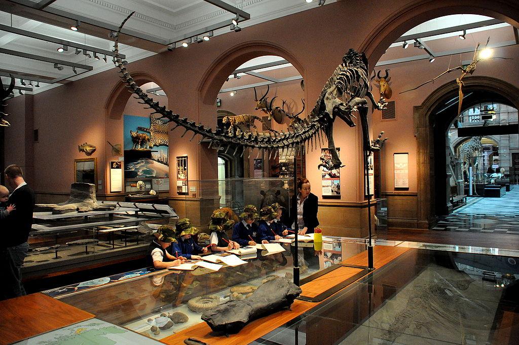 """Partie """"histoire naturelle"""" au musée Kelvingrode de Glasgow."""
