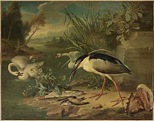 Gerard Rijsbrack - Fishing bird, swans and fish