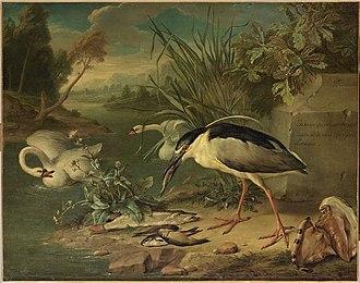 Gerard Rijsbrack - Fishing bird, swans and fish