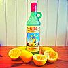 100px-Gin_Xoriguer.jpg