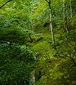 Ginkakuji, Kyoto, Kyoto Prefecture, Japan - panoramio (1).jpg