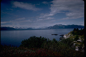 Glacier Bay National Park and Preserve GLBA4358.jpg