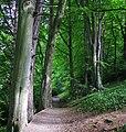 Glenlyon, Holywood (6) - geograph.org.uk - 811041.jpg