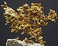 Gold (DeMaria Mine, Placer County, California, USA) 1 (17063147231).jpg