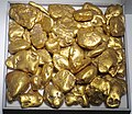 Gold fluvial pebbles (placer gold) (Washington State, USA) 4 (16846562679).jpg