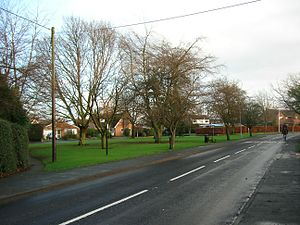 Goostrey - The Bog Bean – the village green at the centre of the village