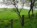 Gort Townland - geograph.org.uk - 1868942.jpg
