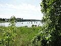 Gottmannsfoerde Rehmsee 2010-06-29 006.jpg