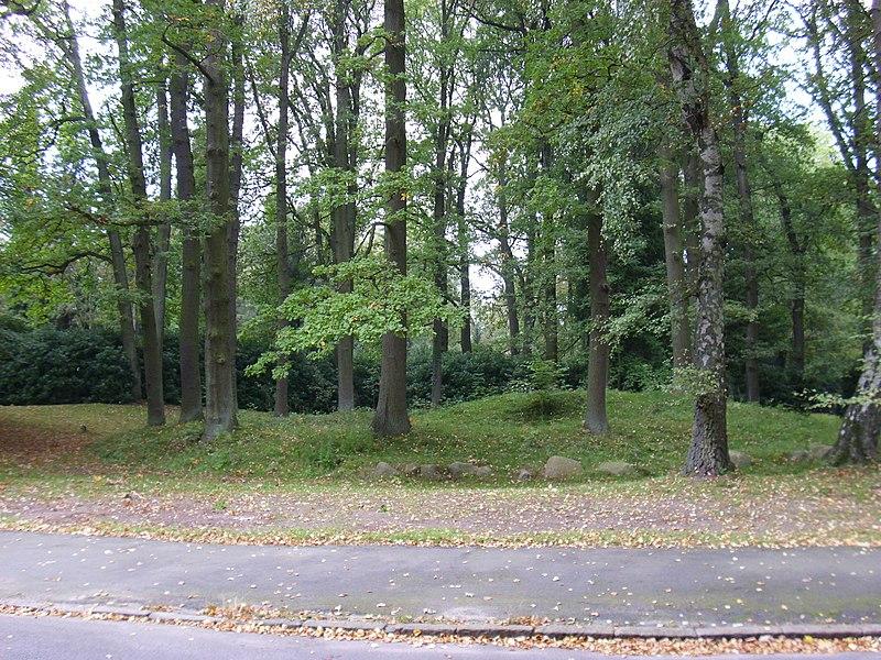 File:Grabhügel am westlichen Abzweig zur Kapelle 2 - U 16 (Friedhof Hamburg-Ohlsdorf).jpg
