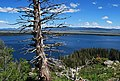 Grand Teton - Jenny Lake - Inspiration Point - panoramio.jpg