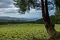 Grazing at Santa Bárbara Hills, Terceira Island, Azores, Portugal (PPL3-Altered) julesvernex2.jpg